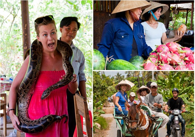 BEST MEKONG DELTA TOUR 1 DAY